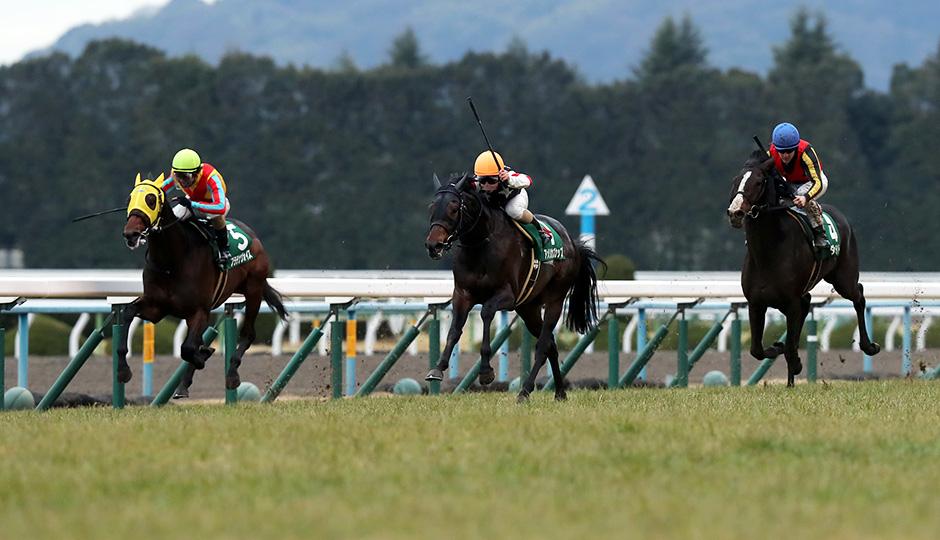 【きさらぎ賞2018】人気馬&特注馬追い切り(調教)タイム