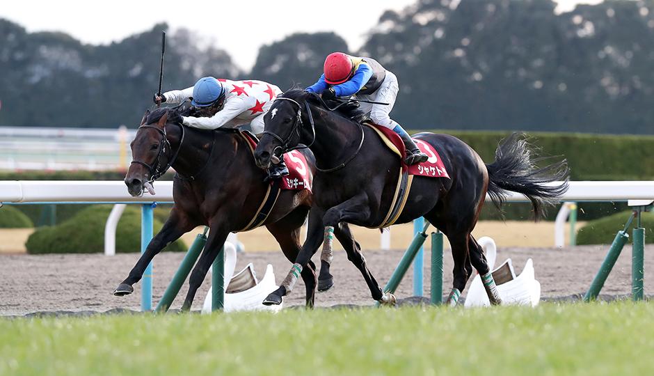 【日経新春杯2018】人気馬&特注馬追い切り(調教)タイム