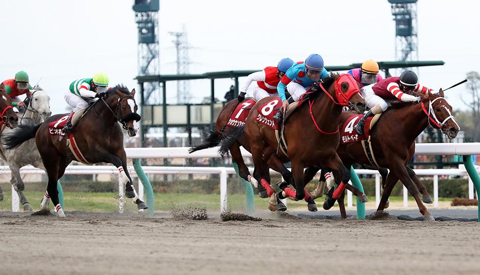 【東海ステークス2018】出走予定馬・予想オッズ・人気馬見解