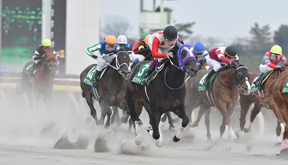 【根岸ステークス2018】人気馬&特注馬追い切り(調教)タイム