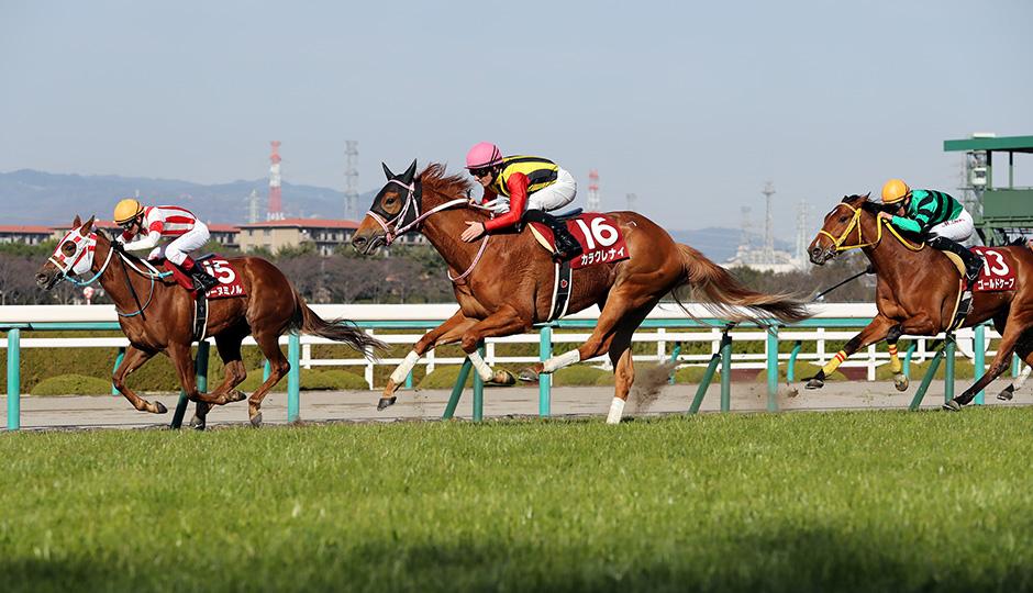 【報知杯フィリーズレビュー2018】出走予定馬・予想オッズ・人気馬見解