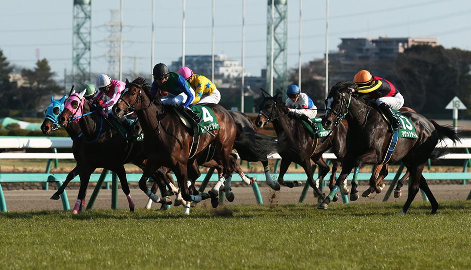 【中山牝馬ステークス2018】出走予定馬・予想オッズ・人気馬見解