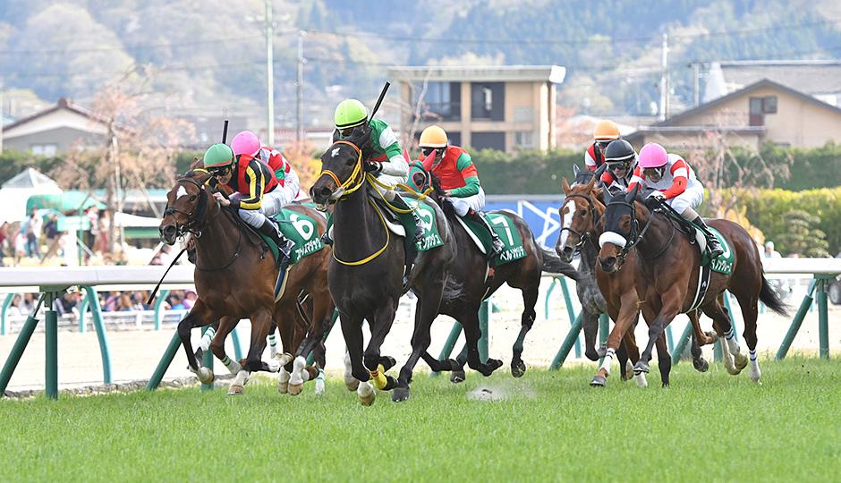 無料ドンズバ予想【福島牝馬ステークス2020】明日のズバ馬